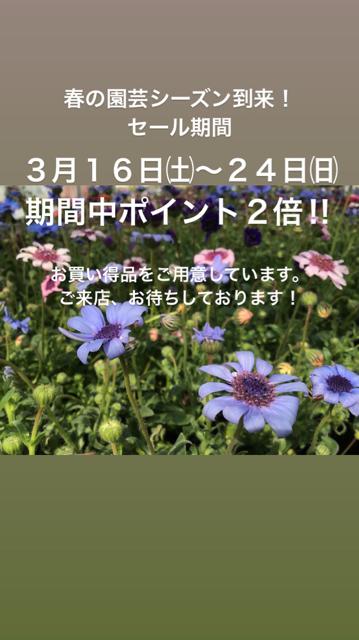 9FF55F89-5D7C-42D5-95CF-8FAD7BC4316E.jpg